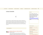 altern-it Cachan